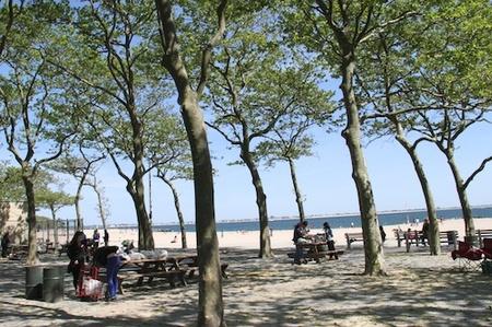 beach-park01.jpg