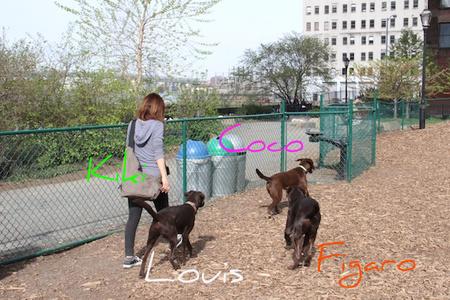 dumbo-park01.jpg