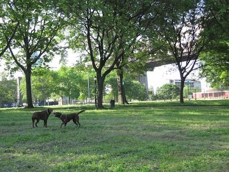 qb-park-morning-0w.jpg