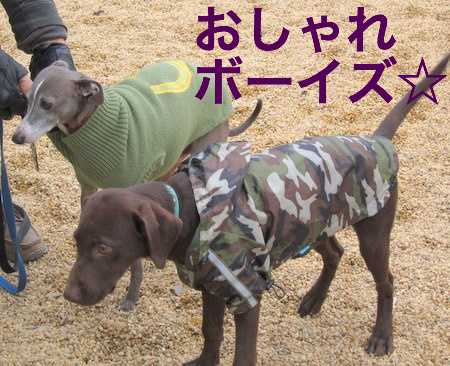 rain-jackets07.JPG